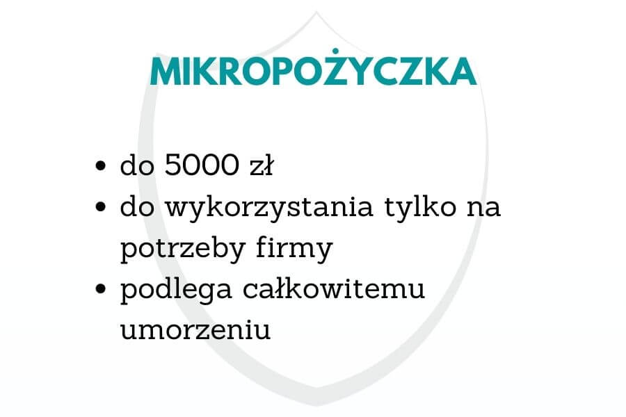 mikropożyczka 5000